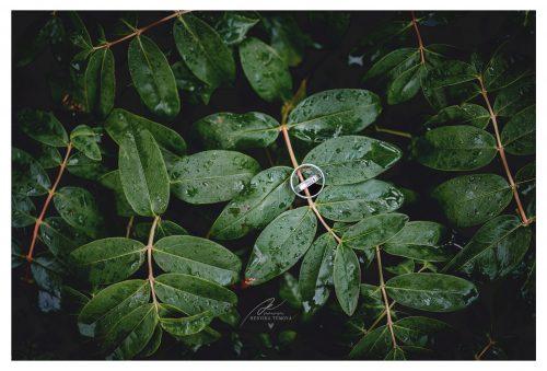 snubní prstýnky se zelenými listy