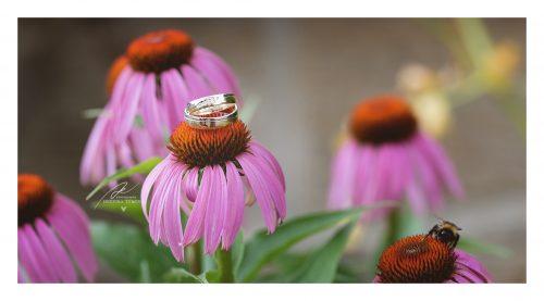 snubní prstýnky na květinách